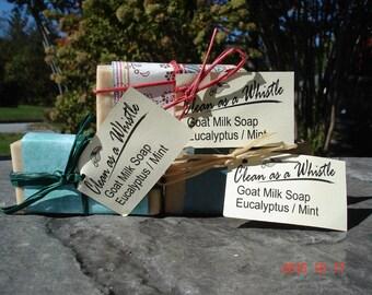 Eucalyptus/Mint Goat Milk Soap