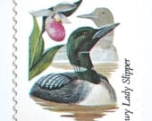 10 Unused Minnesota Loon Stamps // Common Loon and Showy Lady Slipper // Minnesota State Bird and State Flower