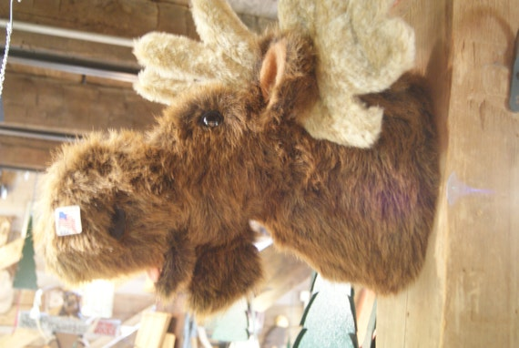 Beautiful Faux Fake Moose Mount Made In The Usa