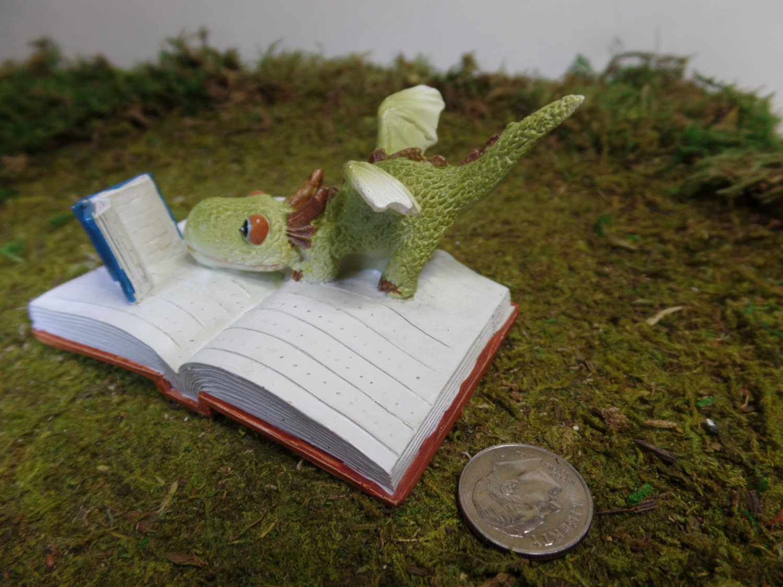 Reading Dragon Fairy Garden Whimsey Container Gardening Miniature Gardening Enchanted Kingdom