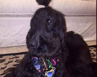 Tie-on Dog Bandana Cool Shades and Dog Bones  - XSmall/Small/Medium/Large