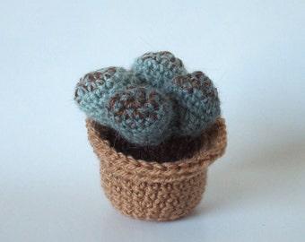 Succulente crochet. Amigurumi: Lythops  Everlasting Exotic Garden