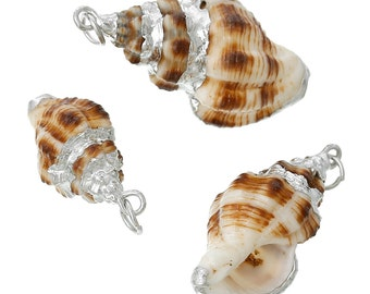 Real Seashell Conch Charms/Pendants- trimmed in Silver (Qty of 5)