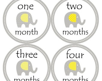 Monthly Stickers Monthly Baby Stickers Baby Month Milestone Stickers Baby Month Stickers Month to Month Bodysuit Stickers Shower Gift 096