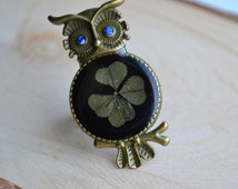 Ring owl  Real Four Leaf Clover lucky clover lucky ring 4 leaf clover  Owl talisman Nature Jewelry Clover Jewelry Eco Jewelry