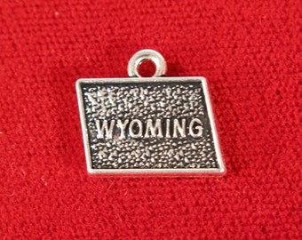 "10pc ""Wyoming"" charms in antique silver style (BC1022)"