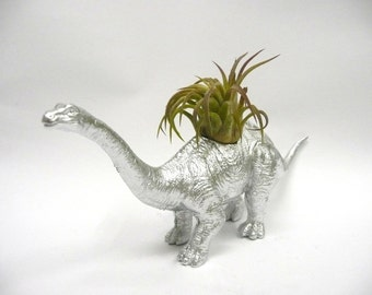 Silver Apatosaurus Dinosaur Planter with Air Plant // Coworker Gift // For Her // For Him