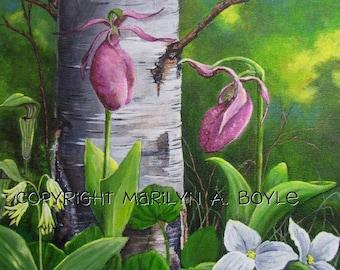 CUSTOM ORDERS - PAINTINGS; 8 X 10 inch acrylic paintings, wildflowers, Canadian art, lady slippers, peonies, pansies, daisies, violas