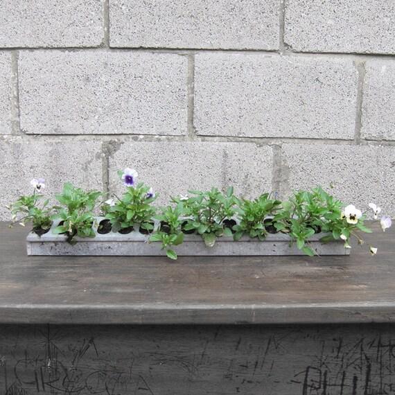 Industrial Garden Planter Flowers Window Metal Pot Plant