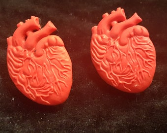 Anatomically Correct heart earrings
