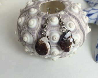 Various shell earrings 2