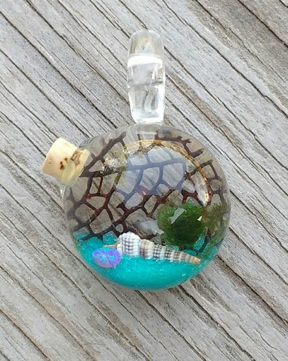 marimo necklace live plant jewelry living by