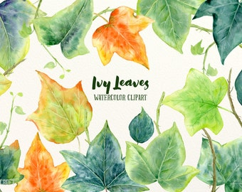 Watercolor ivy leaves illustration, green leaves for instant download for greeting cards, Christmas elements