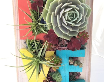 LOVE Vertical Garden Planter frame with live succulents