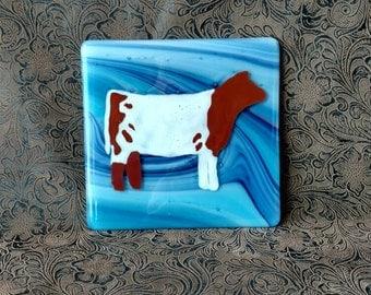 "6"" fused glass tile Shorthorn calf"