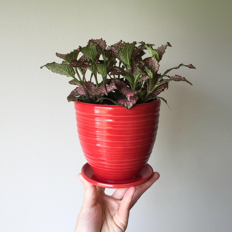 ceramic planter indoor planter outdoor planter modern. Black Bedroom Furniture Sets. Home Design Ideas