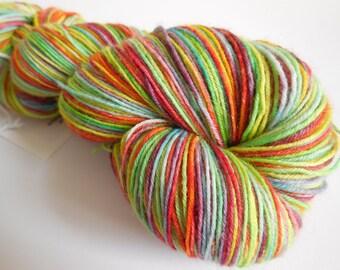 Taste The Rainbow Hand Dyed Superwash BFL/ Nylon Sock Yarn