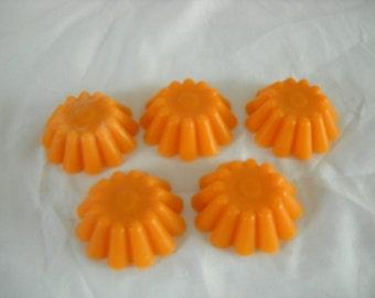 Harvest Time Tarts-Halloween-Thanksgiving-Wax Melts-24pack-Gift Ideas-Samhain-