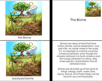 Parts of a Biome Montessori Four Part Cards PDF