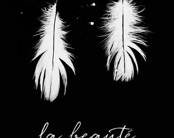 Stunning art print. Art work with pretty white feathers on a black background. French words saying 'the beauty of feathers'