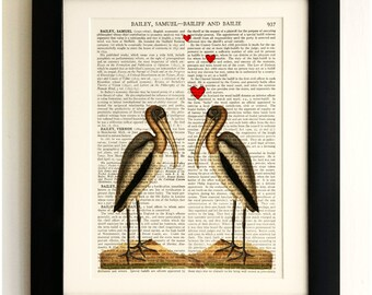 FRAMED ART PRINT on old antique book page - Birds in love, Vintage Wall Art Print Encyclopaedia Dictionary Page