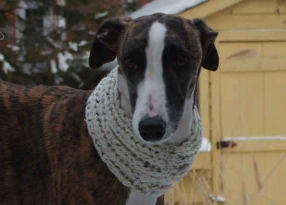 Knitting Patterns For Greyhound Dogs : Instant Download, Greyhound Scarf Knitting Pattern, Pattern PDF, PDF Knitting...