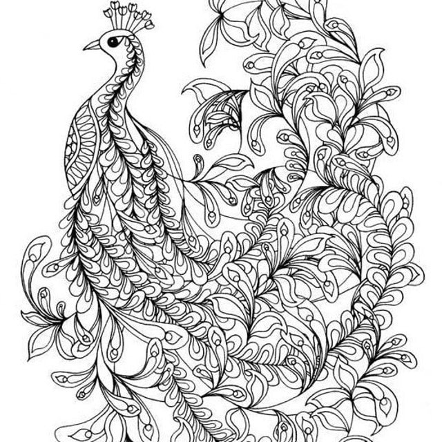 Nature Art Amp Design Prints Stationery Amp By TangledPeacock