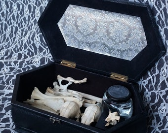 Animal bones and crystals curiosity collection pastel witch kit
