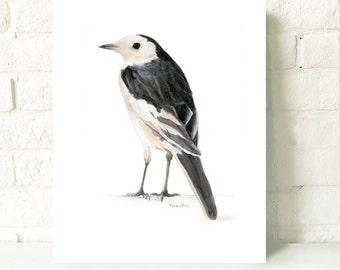 Watercolor Art Print, Bird Painting, Original Watercolor Painting Print, Bird Art, Animal Painting