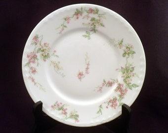 "Theodore Haviland Schleiger 1240 Salad Plate, 7 1/2"", Antique Porcelain 1903"