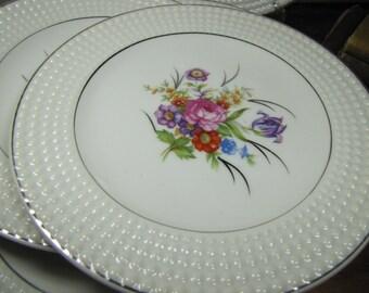 Hobnail Rim Dessert Plates - Floral Spray - Set of Six (6)