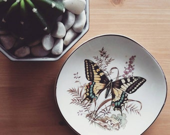 Vintage  eastern tiger swallowtail butterfly plate.