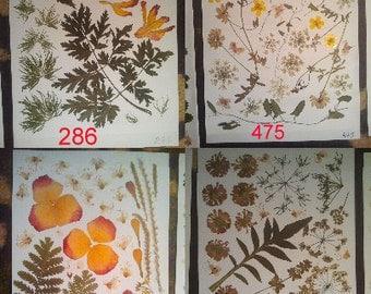 Pressed leaves Wedding table decor - #286 #268 #475 #444
