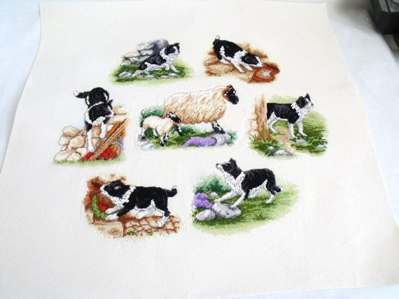cross stitch collies, finished wall art, dog picture, border collie embroidery, unmounted picture,
