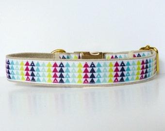 Pretty Triangles dog collar, Modern dog collar, Gold dog collar, Colorful, Bright, Geometric, Metal hardware - 1 inch (25mm) wide