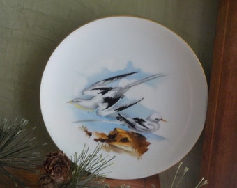 RARE...Vintage  Candsrea, Sea Gull  Plate , Hand Painted, Made In Japan