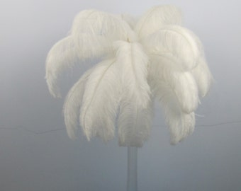 50pcs white ostrich feather for wedding table centerpiece    Samba accessories