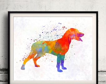 Save Valley Scenthound 01 in watercolor - Fine Art Print Poster Decor Home Watercolor Illustration Dog - SKU 2232