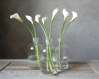 Pretty Vintage Clear Glass Bottles with Stopper, Apothecary/Medicine/Pharmacy Bottles, Farmhouse Country Bottles/ Clear Glass Vase