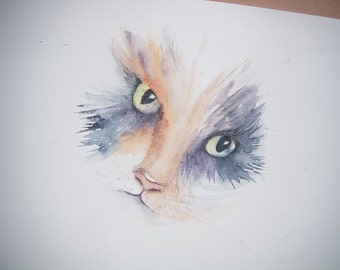 Watercolour study of tortoiseshell cat