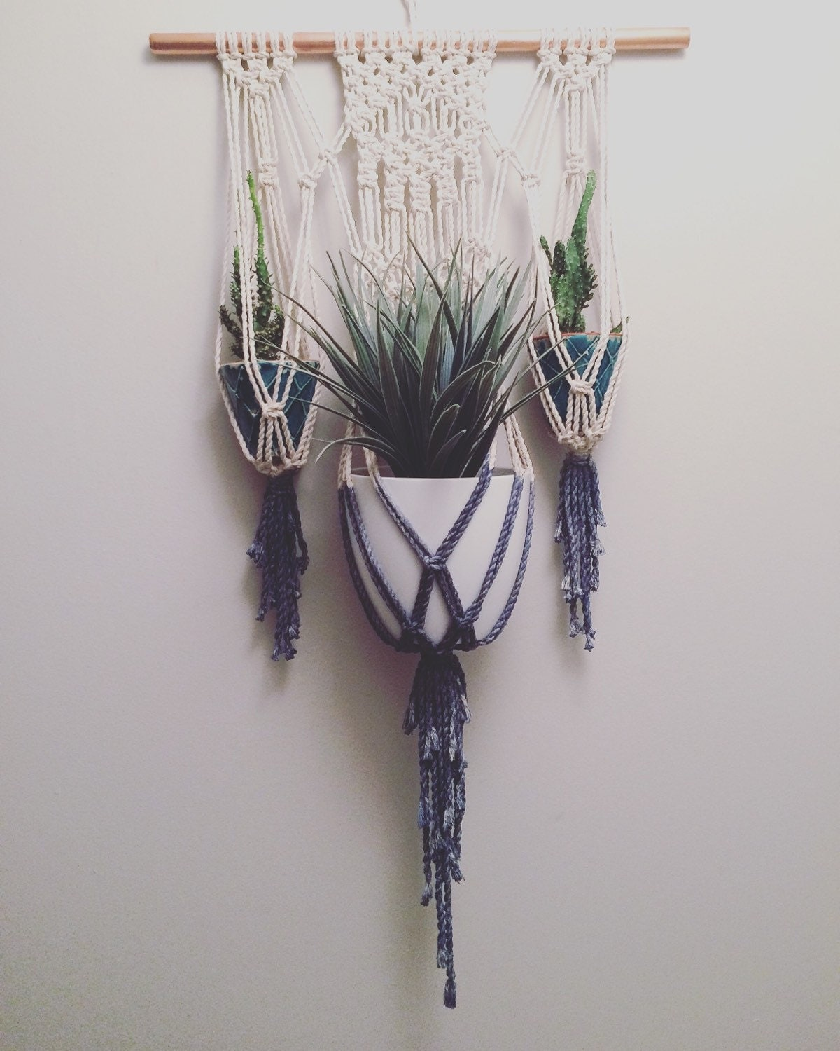 Fence Plant Hangers: Dip Dyed Macrame Plant Hanger Macrame Plant Hanger Modern