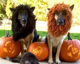 SMALL/XSMALL-Dog Halloween Costume