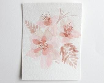 Rose Quartz Amaryllis