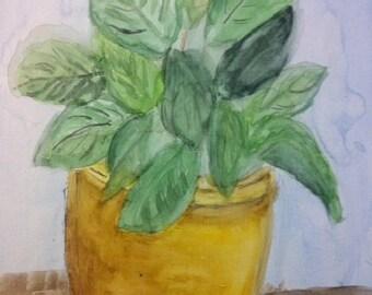 Plant in Gold Ceramic Pot
