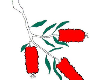 Callistemon Flower - Greeting Card