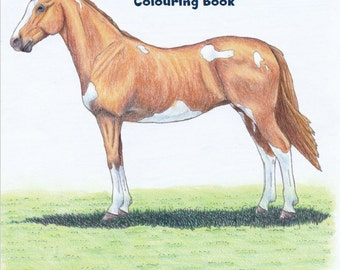 Coloring Book - The Ultimate Horse Colouring Book