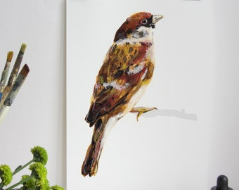Garden Bird Print - Tree Sparrow