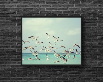 Seagulls Photo - Gulls Photo - Sea Photo - Sea Print - Nautical - Seaside - Turquoise - Sea Wall Art - Sea Wall Decor - Beach House Decor