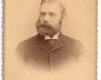 Victorian facial hair beard mustache cabinet card Blaul man dapper handsome photo
