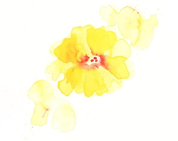 "Original watercolor flower painting: ""Splash of Yellow"""
